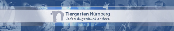 Tiergarten N&uuml;rnberg